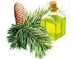 Пихтовое эфирное масло: универсальное средство
